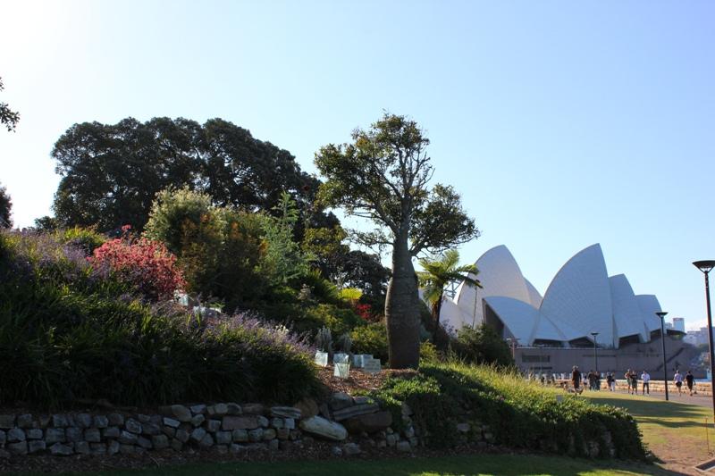 Royal botanic gardens sydney free