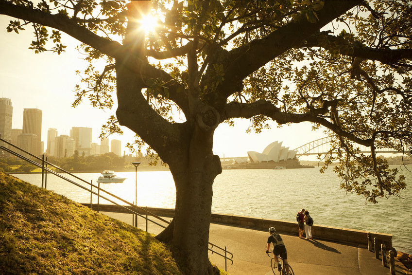 mrs macquarie point, sydney