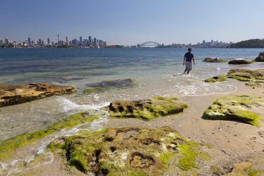 Shark Island, Sydney
