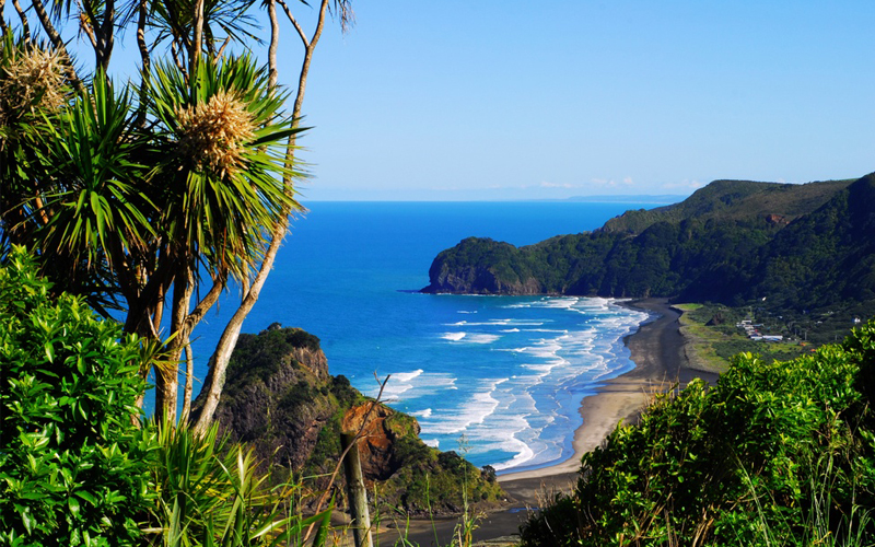 West Coast Beaches, New Zealand