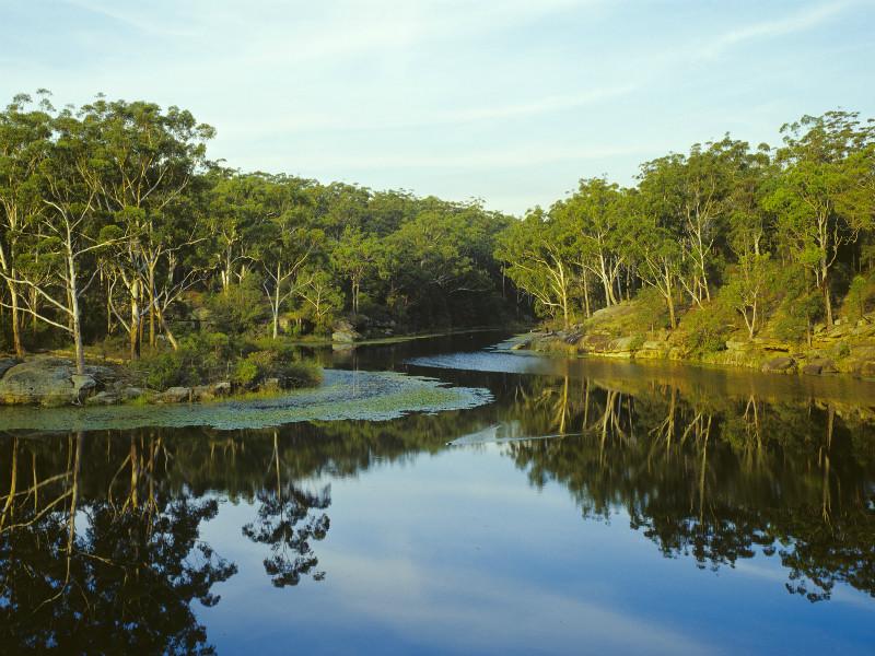Lake Parramatta Reserve, Parramatta, Sydney.
