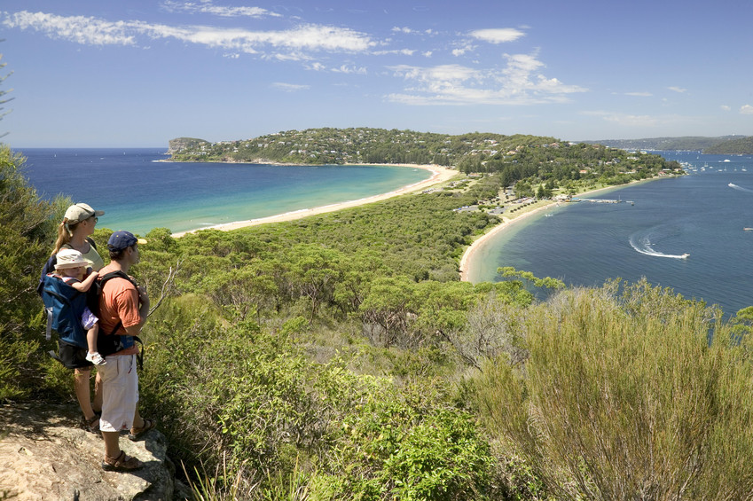 barrenjoey whale watching sydney