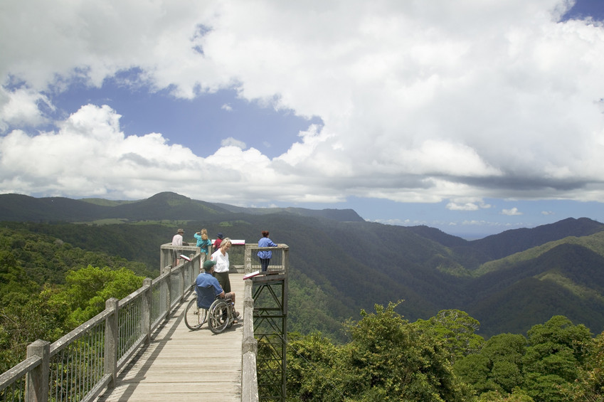 The Dorrigo Rainforest Centre Skywalk at Dorrigo National Park