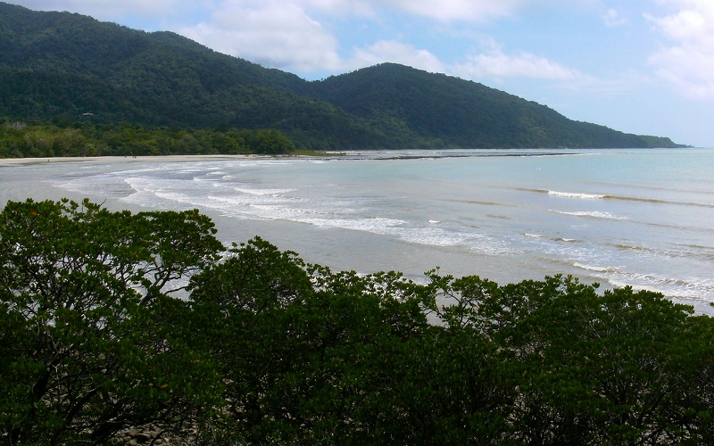 Cape Tribulation in the Daintree National Park, Queensland, Australia. Source: Paul Holloway.