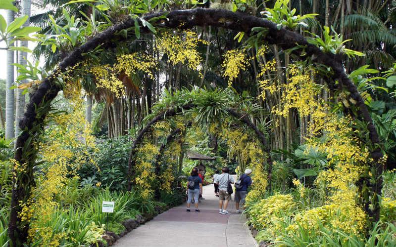 The Singapore Botanic Gardens, Singapore