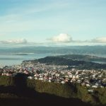 48 hours things to do in wellington