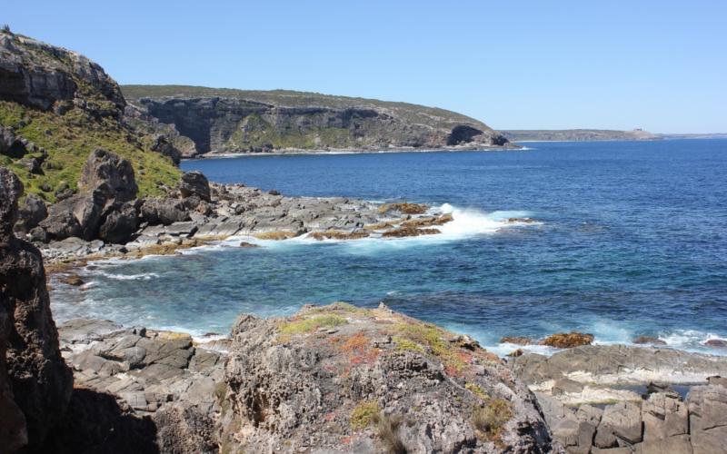 Admirals Arch Kangaroo Island South Australia