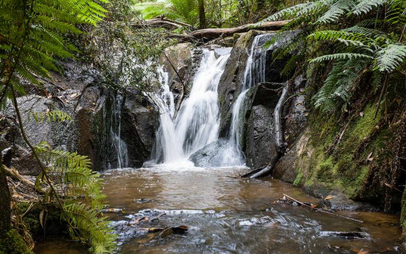 Olinda Falls, Dandenong Ranges National Park, Victoria, Australia