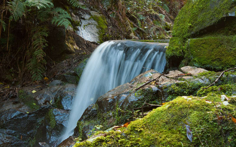 Sherbrooke Falls Trail, Victoria