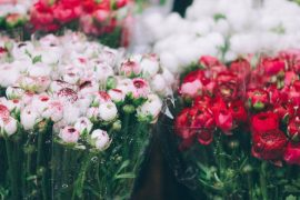 Best Flower Markets in the World