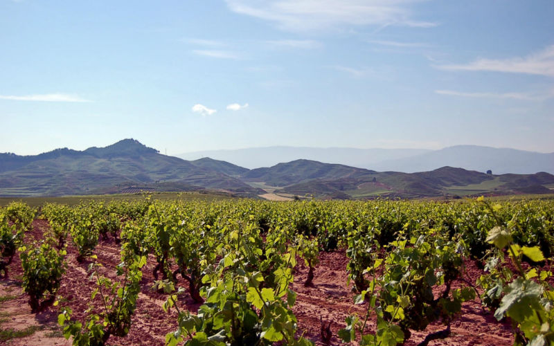 The La Rioja wine region, Spain