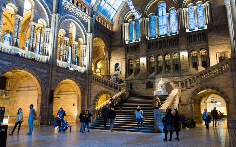 Grand stairway at the London Museum of Natural History, London, England
