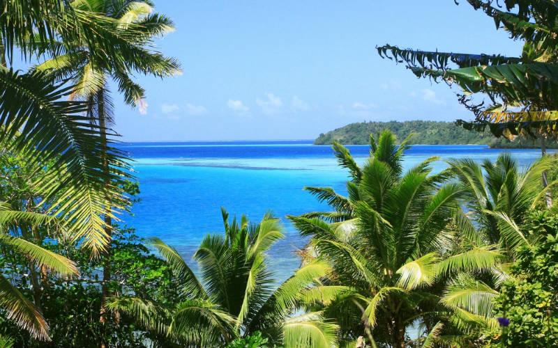 ocean palm trees Fiji