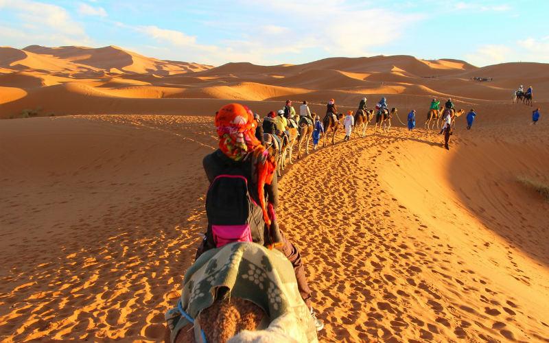 Sahara Desert camel caravan, Morocco