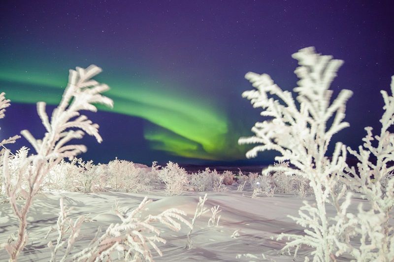 The Northern Lights in the Swedish Lapland