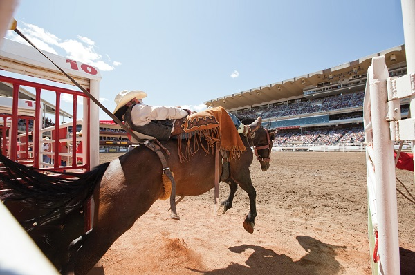 Calgary Rodeo Canada