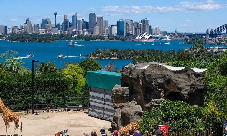 Taronga-Zoo-School-Holiday-Ideas-Australia