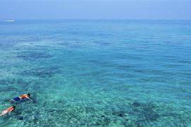 Snorkelling-Spots-Best-Places-Webjet