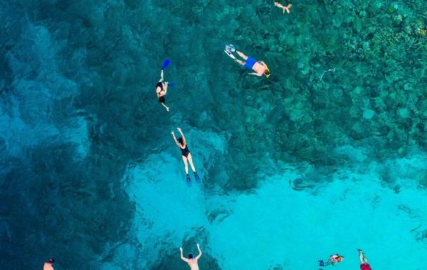 Snorkelling-Maldives-Drone