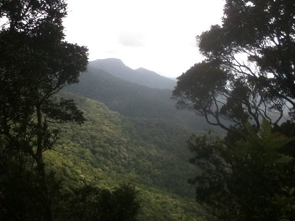 Mount-Sorrow-Cape-Tribulation-Port-Douglas-Activity