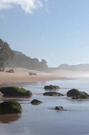 Escape The Crowds At These Secret Beaches on the NZ North Island