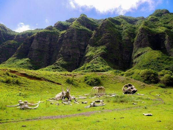Kualoa-Ranch-Oahu