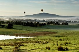Yarra-Valley-Landscape-Australia-Wine-Region