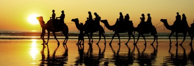 Teenagers and adults alike will love activities like camel riding in Dubai.