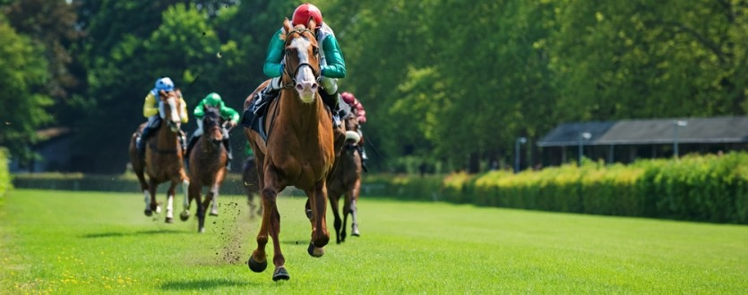 Will you make it to the Melbourne Cup this year?